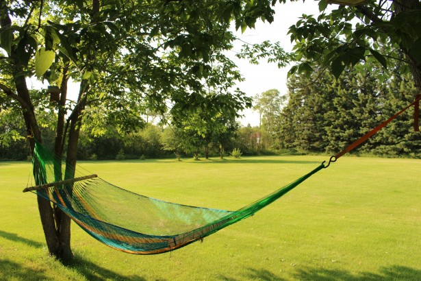 swinging-hammock-backyard